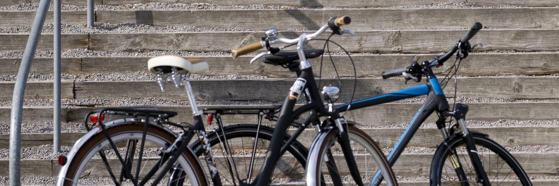 der richtige fahrradsattel f r ihr fahrrad und e bike. Black Bedroom Furniture Sets. Home Design Ideas